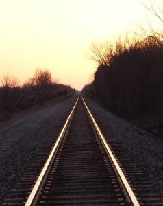 Sigue tu camino